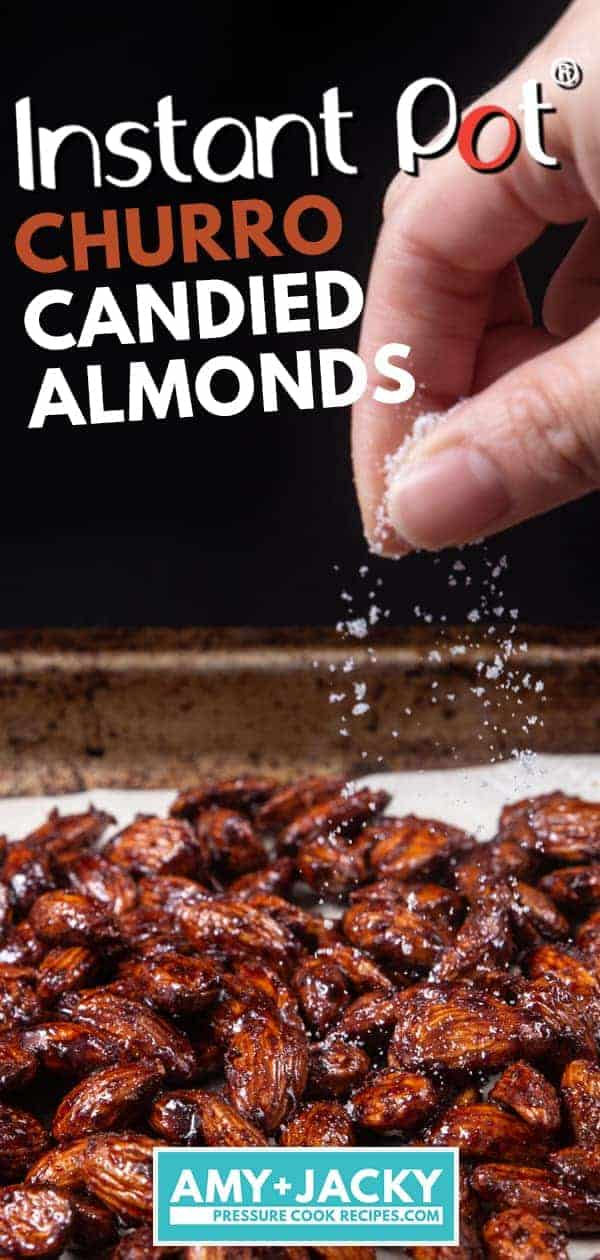 Instant Pot Churro Candied Almonds | Cinnamon Almonds | Caramelized Almonds | Spicy Candied Almonds | Candied Nuts | Christmas Food Gifts | Homemade Christmas Gifts | Edible Gifts #instantpot #slowcooker #foodgifts #christmas #gifts #recipe #nuts