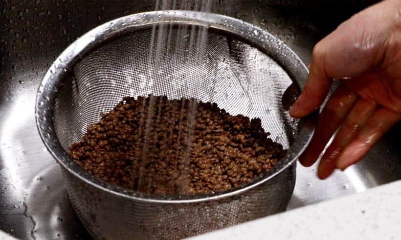 rinse brown lentils  #AmyJacky #InstantPot #PressureCooker #recipe