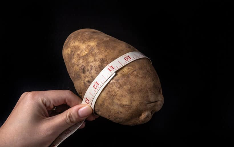 large russet potato