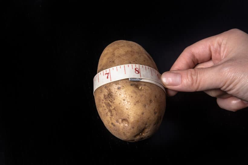 small russet potato